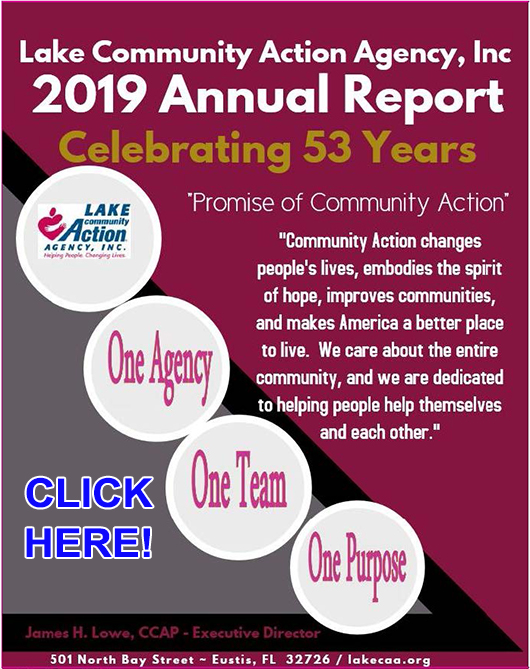LCAA 2019 Annual Report